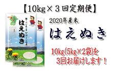 【ふるさと納税】【定期便】2020年河北町産「はえぬき」10kg×3回【JAさがえ西村山】