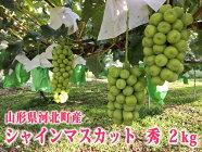 【ふるさと納税】山形県河北町産シャインマスカット2kg