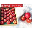 【ふるさと納税】冷た〜い雪蔵貯蔵サンふじ約5kg 【果物類・...