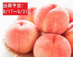 【ふるさと納税】大江町産「白桃」約5kg(秀以上・18〜24玉) 【果物・もも・フルーツ】 お届け:2020年8月17日〜2020年9月30日