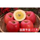 【ふるさと納税】11月 高徳りんご約2.5kg 【山形りんご・大江町産】 【果物類・林檎・りんご・リンゴ・約2.5kg】 お届け:2021年11月10日〜2021年11月30日