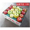【ふるさと納税】12月 訳あり 旬のりんご詰合せ約10kg(サンふじ確約3種以上)【大江町産・山形りんご・りんご専科 清野哲生】 【果物類・林檎・りんご・リンゴ】 お届け:2021年12月1日〜2021年12月23日