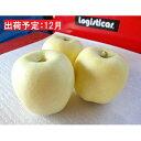 【ふるさと納税】12月 訳あり 大江はるか約3.5kg【大江町産・山形りんご・りんご専科 清野哲生】 【果物類・林檎・りんご・リンゴ】 お届け:2021年12月1日〜2021年12月23日
