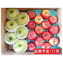 【ふるさと納税】11月 訳ありこうとく&季節のりんご詰合せ約5kg2種以上【大江町産・山形りんご・りんご専科 清野哲生】 【果物類・林檎・りんご・リンゴ】 お届け:2021年11月1日〜2021年11月20日