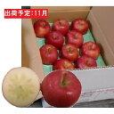 【ふるさと納税】11月 訳ありこうとく約4.5kg【大江町産・山形りんご・りんご専科 清野哲生】 【果物類・林檎・りんご・リンゴ】 お届け:2021年11月1日〜2021年11月15日
