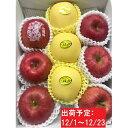 【ふるさと納税】12月 贈答規格「サンふじ」「はるか」約3kg詰合せ(特秀〜秀)【大江町産・山形りんご・りんご専科 清野哲生】 【果物類・林檎・りんご・リンゴ】 お届け:2021年12月1日〜2021年12月23日