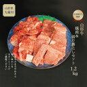 【ふるさと納税】山形牛 焼肉用(もも・肩)&切落しセット1.2kg