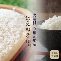 【ふるさと納税】先行予約令和元年産はえぬき10kg(精米)