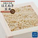 【ふるさと納税】鮭川村 令和2年産はえぬき<玄米> 15kg