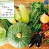 鮭川村の農家自慢!旬のもぎたて新鮮野菜