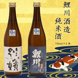 鯉川酒造純米酒セット