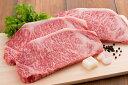 【ふるさと納税】山形牛サーロインステーキ(210g×3枚)