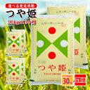 【ふるさと納税】≪定期便≫特別栽培米つや姫10kg(5kg×