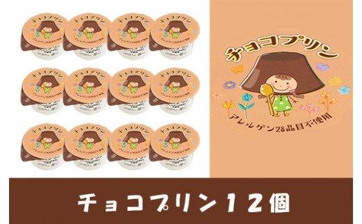 【ふるさと納税】No.0103 チョコプリン12個入り(アレルゲン28品目不使用)