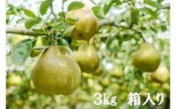 【ふるさと納税】No.0377先行予約福島産果物の女王ラ・フランス3kg(11〜13玉)