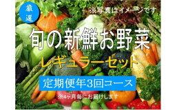 【ふるさと納税】No.1006大人気!旬の新鮮お野菜レギュラーセット(詰め合わせ)【定期便3回】