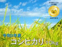 【ふるさと納税】No.1013令和2年産コシヒカリ10kg(5kg×2)精米