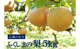 【ふるさと納税】No.1069【先行受付】ふくしまの梨5kg品種お任せナシなし