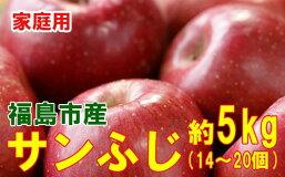 【ふるさと納税】No.0797リンゴ家庭用サンふじ約5kg(14個〜20個)【訳あり】