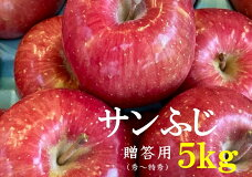 【ふるさと納税】No.1010【贈答用】りんごサンふじ5kg蜜入り林檎リンゴ