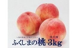 【ふるさと納税】No.1396今年最後のふくしまの桃3kg(晩生種)ももモモ