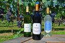 【ふるさと納税】いわき産ワイン詰合せ