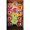 【ふるさと納税】北條農園のりんご味比べ ?4.5kg
