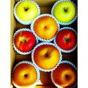 【ふるさと納税】北條農園の有機肥料、低農薬栽培の【梨とりんご