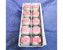 【ふるさと納税】No.004果肉と生クリーム入り生菓子「桃ふく」10個