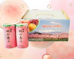 【ふるさと納税】No.017「福島桃の恵み」40本果汁100%ジュース