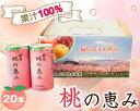 【ふるさと納税】No.080 「福島桃の恵み」20本  果汁