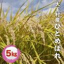 【ふるさと納税】福島県大玉村産ひとめぼれ5kg