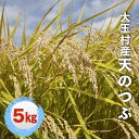【ふるさと納税】福島県大玉村産天のつぶ5kg