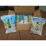【ふるさと納税】福島県鏡石町産コシヒカリ・天のつぶ食べ比べセット精米2kg×4袋【1107516】