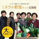 【ふるさと納税】定期便 西会津ミネラル野菜セット(大) 月1...