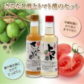 【ふるさと納税】玉川村野菜のお酢セット