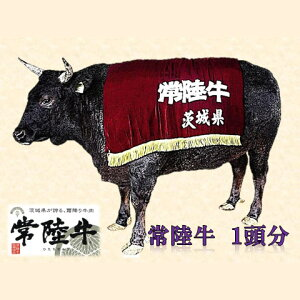 【ふるさと納税】☆毎月1頭限定☆古河市で育った常陸牛のまるまる一頭分食べ尽くし【精肉:250k…