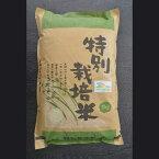 【ふるさと納税】AS05_【令和元年新米】古河市産特別栽培米コシヒカリ15kg【小久保農園】米/こしひかり/15kg