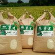 【ふるさと納税】倉持農園オリジナルブランド【農米】みのり米 平成29年産 新米こしひかり 15kg 精米