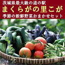 【ふるさと納税】BQ02_道の駅まくらがの里こが 季節の新鮮...