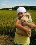 【ふるさと納税】AN02_【令和元年新米】古河市産コシヒカリ15kg【倉持農園】 米/こしひかり/