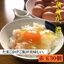 【ふるさと納税】AG03_江原ファーム 体に優しい地養卵(30個)たまご/タマゴ/生みたて/新鮮/