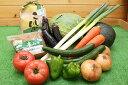 【ふるさと納税】AU01_JA直売所厳選!地場産 旬の野菜・お米・みそ詰め合わせ