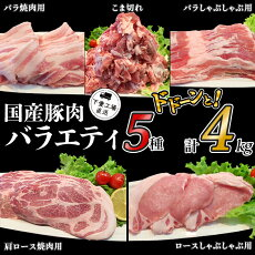 57-3国産豚肉バラエティ5種セット4kg(小分け真空包装)【下妻工場直送】