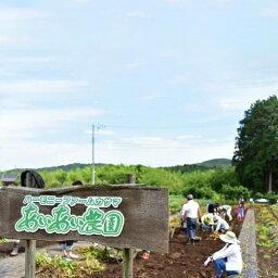 【ふるさと納税】AZ-7 自然と触れ合う農村体験!あいあい農園オーナー利用券(1区画分)