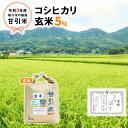 【ふるさと納税】令和3年産 桜川市の厳選甘引米 コシヒカリ 玄米5kg