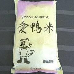 【ふるさと納税】【定期便】アイガモと一緒に育てたお米「愛鴨米・白米」3kg×12回