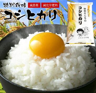 【ふるさと納税】【定期便】田宮さんちのコシヒカリ 5kg×6回