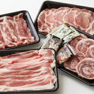 【ふるさと納税】3ヶ月定期便 【田中農場のすずし豚】 豚肉詰合せ
