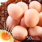 黄身がしっかり濃厚な卵【アスタの恵み】50個
